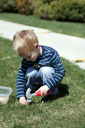 outdoor toddler activities