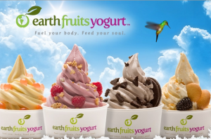earth_fruits_frozen_yogurt