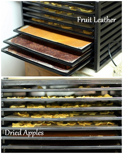 excalibur dehydrator 9 tray fruit leather