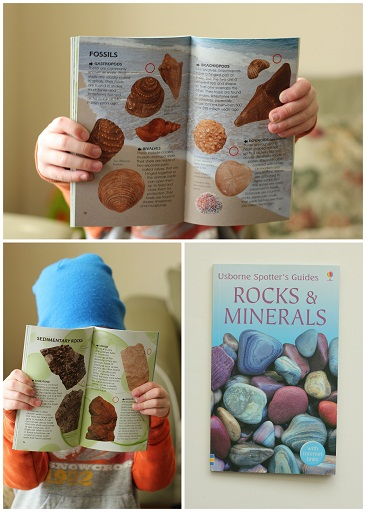 usborne spotters guide to rocks and minerals hollsbooks
