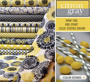citron gray color story michael miller